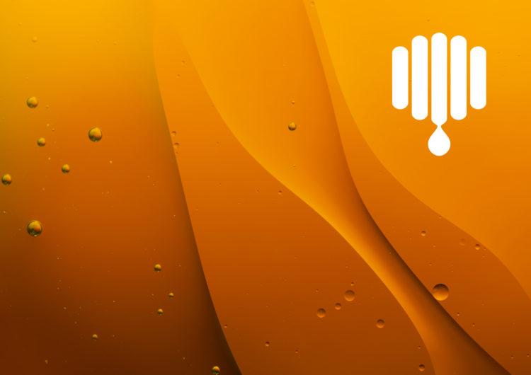 Chrisomelo honey logo design